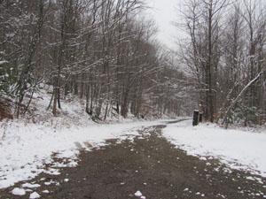 o-w-trail.jpg